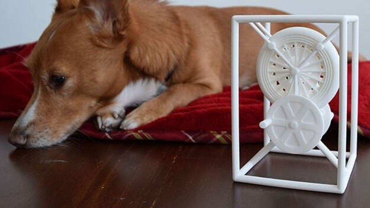 Featured image of Woof Woof! Miracle the 3D Printing Dog (and His Human)