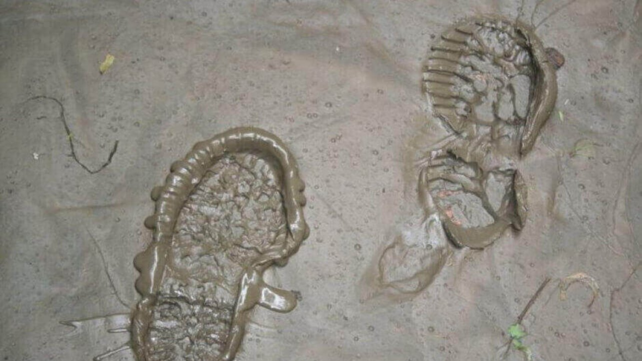 Featured image of 3D ForensicsCapture Shoe Prints Instantly in Three Dimensions