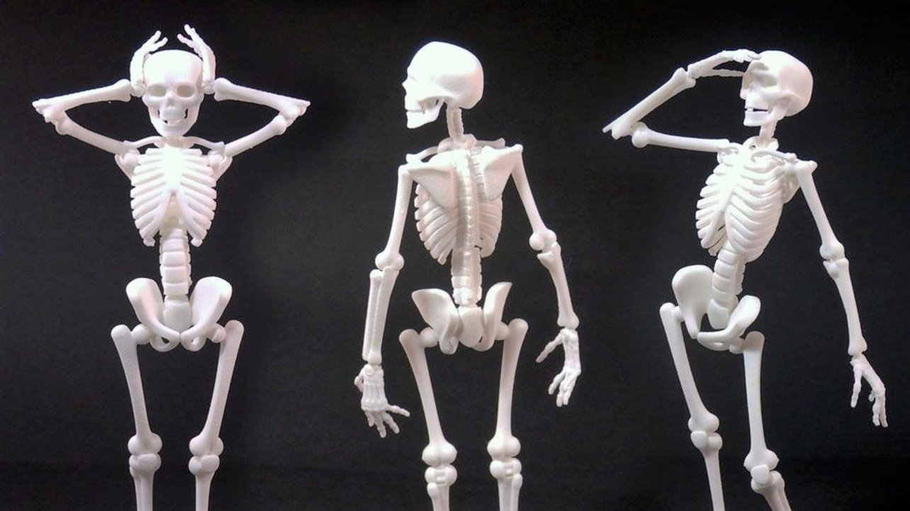 3D Printed Skeleton – Best Curated Models to 3D Print | All3DP