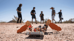 Featured image of C-Turtle: The Paper Turtle Robot That Can Detect Landmines