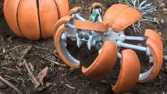 Image de l'en-tête de Projet Halloween : imprimez en 3D une Araignée-Citrouille Transformer !