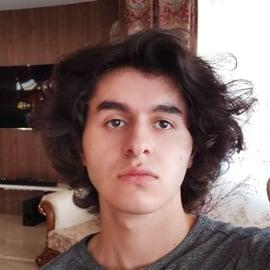Author image of Amir M. Bohlooli