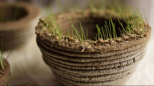 Featured image of Print Green Revolutionizes Gardening with 3D Printing