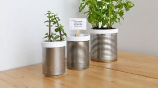Featured image of Upcycle Tin Cans with a 3D Printed Campbell Planter
