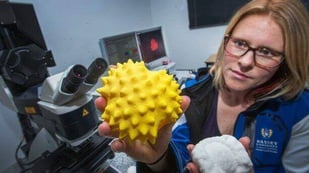 Featured image of 3D Printed Pollen Models are Innovation Awards Finalists