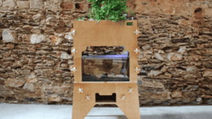 Featured image of Aquapioneers Offer a 3D Printed Urban Farming System