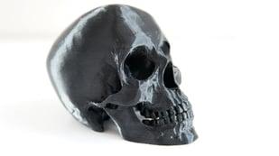 Featured image of 3D Printed Skull: 15 Skulls & Skull-Themed Models