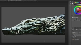 Featured image of Reference Images for 3D Modeling: 10 Best Sites