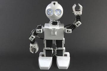 Image of 3D Printed Robot: JD Humanoid