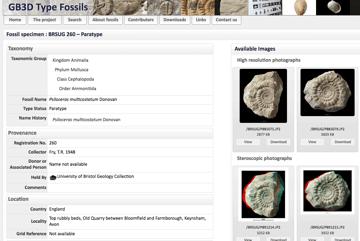 Imagen de Modelos 3D gratuitos: GB3D Type Fossils