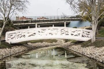 Image de Bâtiment / Structure / Maison imprimée en 3D: Passerelle pour piéton à Madrid