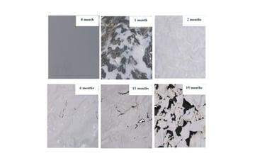 PLA biodegradation in landfill conditions