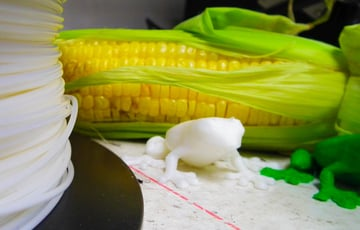 Metamorphosis of frogs is quite different in the 3D printing world.