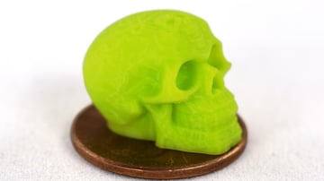 A tiny skull printed by a Lulzbot printer