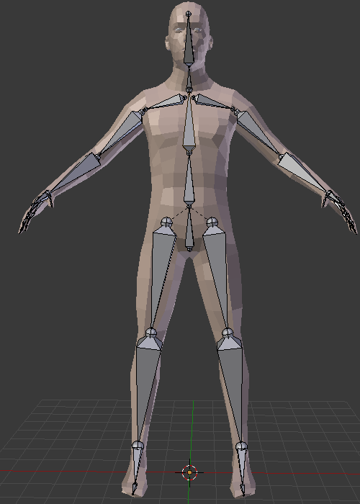 A more complete rigged human model.