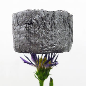 This graphene aerogel block doesn't even disturb its flower support.