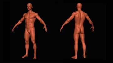 One of the models from Free3D