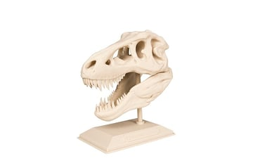 This 3D printed replica of a T-Rex skull also comes with a lesson plan