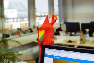 Image of: 9. Human Scale Parrot