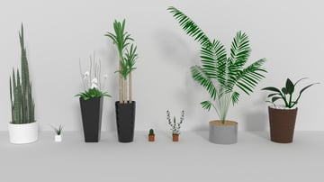 A collection of printed plants