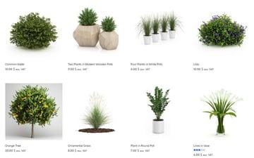 Simple and elegant 3D plant models