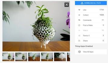 Unique 3D plant model