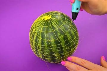 Watermelon wireframe
