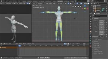 mesh and armature