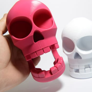 Careful of putting your finger near this chompy skull