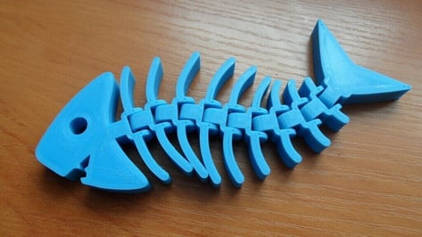 Featured image of Fishy Filaments: Eco-Friendly 3D Printing Project for Local Communities