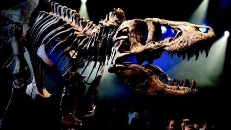 Featured image of Missing Bones in Tyrannosaurus Rex Skeleton Provided by 3D Printing