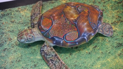 Featured image of Neural Network Tricked into Thinking 3D Printed Turtle is a Rifle