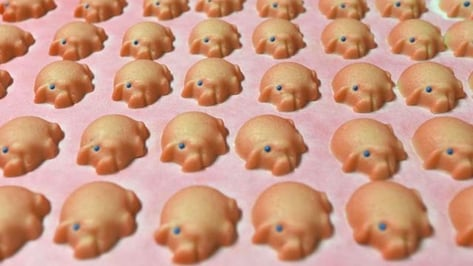 Featured image of 3D Printing Marzipan Animals and Fruit in Germany's Luebeck