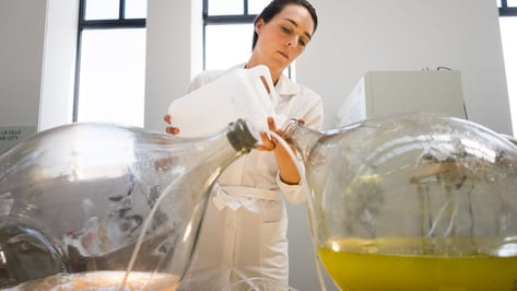 Featured image of Dutch Designers Transform Algae Into 3D Printable Biopolymer Material