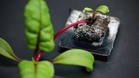 Featured image of Farmshelf Uses 3D Printed Parts For Smart Indoor Urban Farming