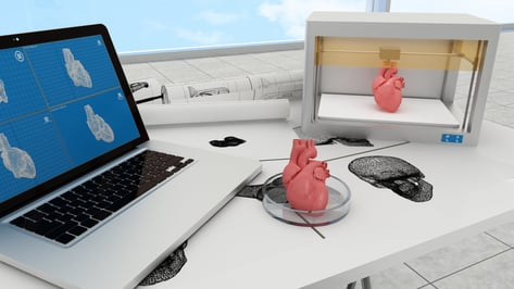 Featured image of 5 Most Promising 3D Printed Organs for Transplant