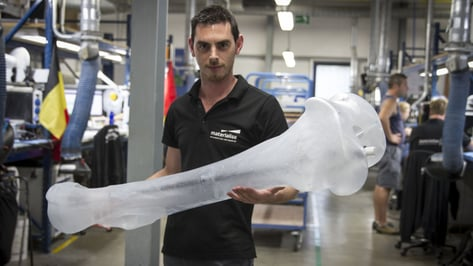 Featured image of Materialise to 3D Print a Full Mammoth Skeleton