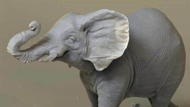 Featured image of Tiny A 3D Printed Elephant Highlights Huge Poaching Problem