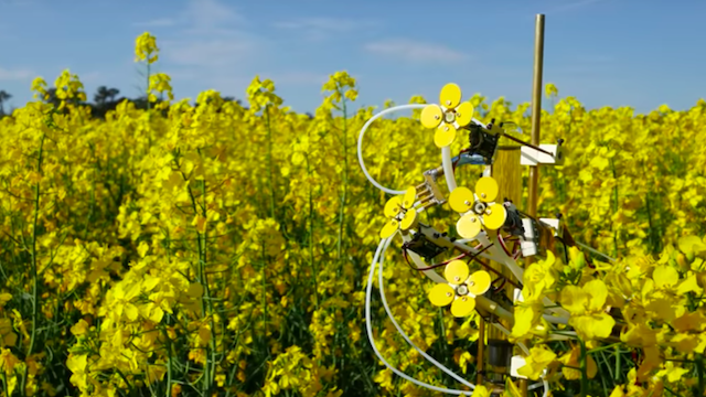 Featured image of Can the 3D Printed Synthetic Pollenizer Help the Bee Population?