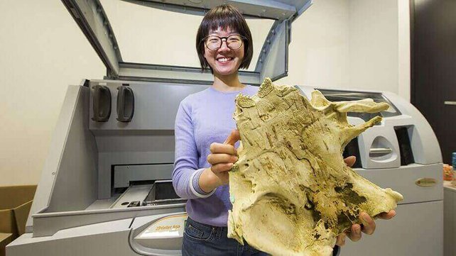 Featured image of 400-Million-Year-Old Fish Fossil Shows Evolutionary Link with Humans