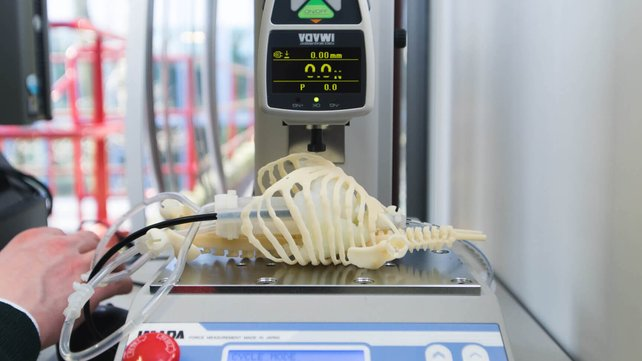 Featured image of 3D Printed Neonatal Manikins with Simulated Organs Improve Surgical Success