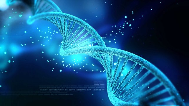 Featured image of 3D Printed Bunny Holds Information Encoded in DNA to Copy Itself
