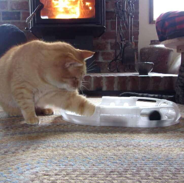 Image of 3D Printed Cat Accessories: Cat Toy Race Track