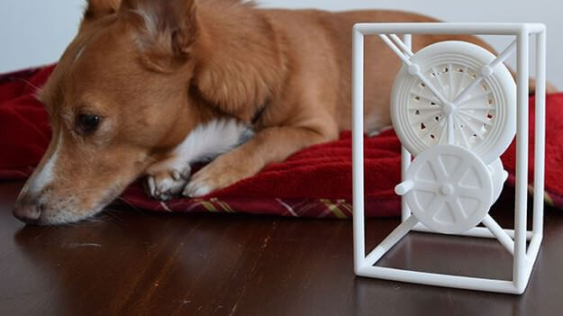 Woof Woof! Miracle the 3D Printing Dog (and His Human) | All3DP