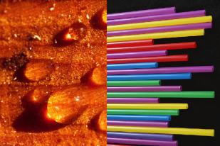 Featured image of FDM vs SLA: comparaison des procédés d'impression 3D