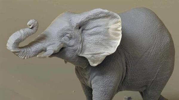 Tiny A 3D Printed Elephant Highlights Huge Poaching Problem | All3DP