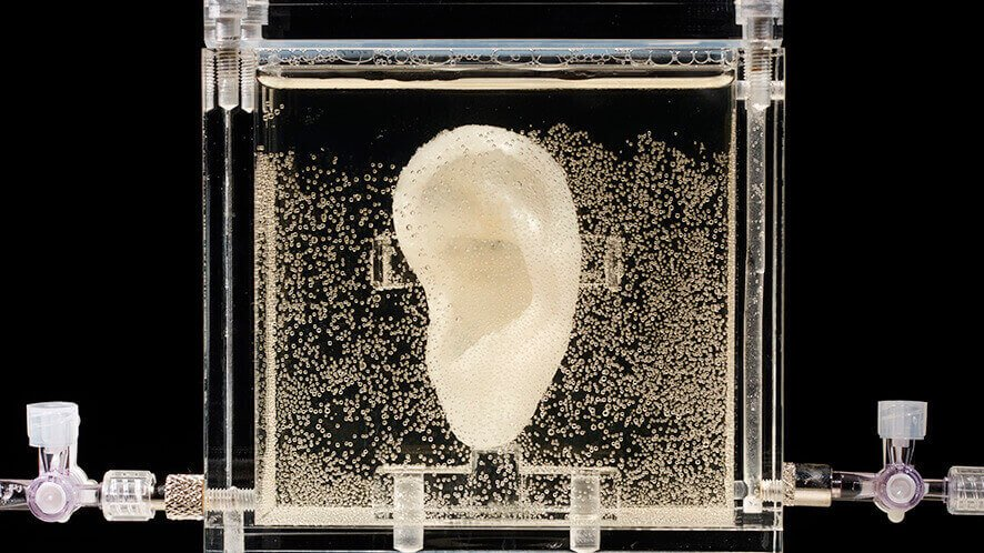 3D Bioprinting the Lost Ear of Vincent van Gogh | All3DP