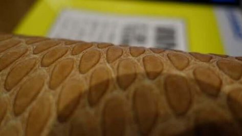Featured image of 2.5D Printing: Casio 3D Prints Textures onto Paper