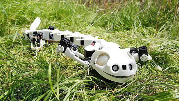 Pleurobot is 3D Printed Robot that Walks & Swims like a Salamander | All3DP