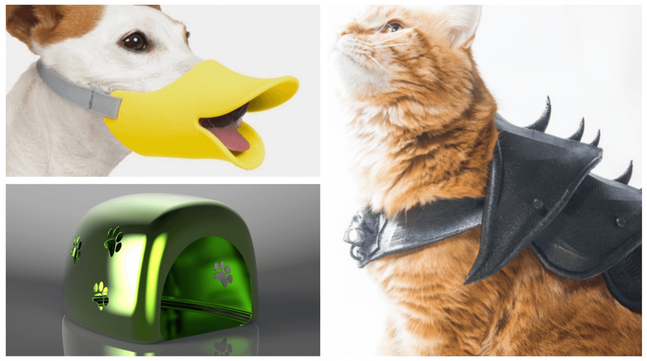 Featured image of 30 Fun, Easy 3D Printed Pet Toys & Accessories